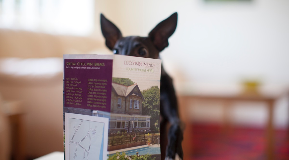 Dog Friendly Holidays, Luccombe Manor Country House Hotel, Isle of Wight