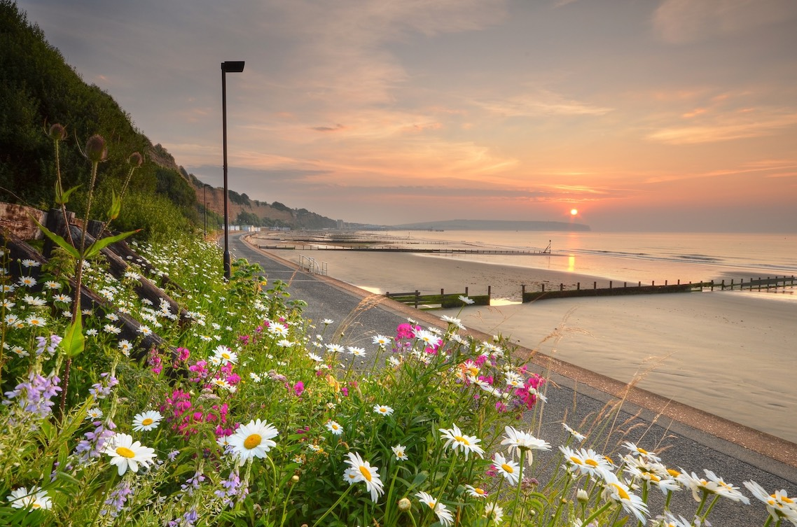 Flash Sale Offer, Luccombe Manor Country House Hotel, Isle of Wight